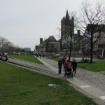 Park on the banks of the Rhine