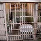 A cell at Alcatraz
